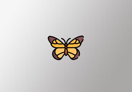Kelebek Sürücü Kursu - Van